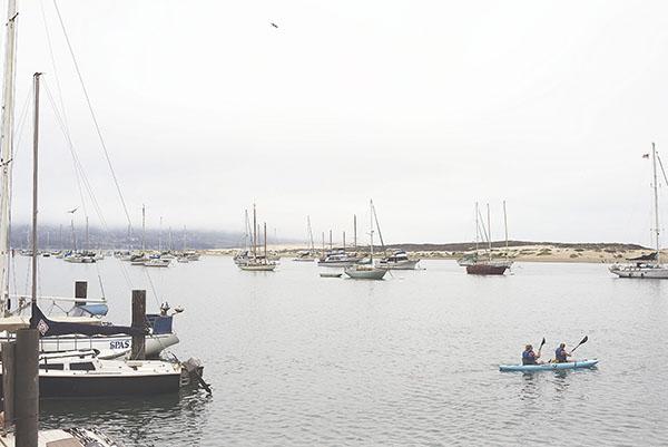07-07-14 PCH (D6H) - Morro Bay 020
