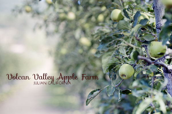 09-28-14 Apple Picking 032